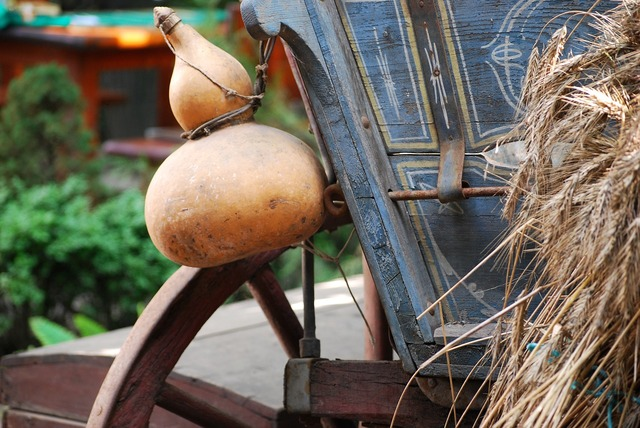 Cart gourd village.
