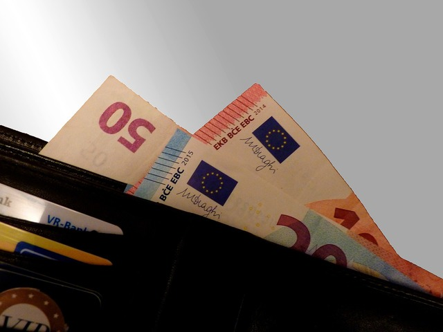 Cash income euro, business finance.