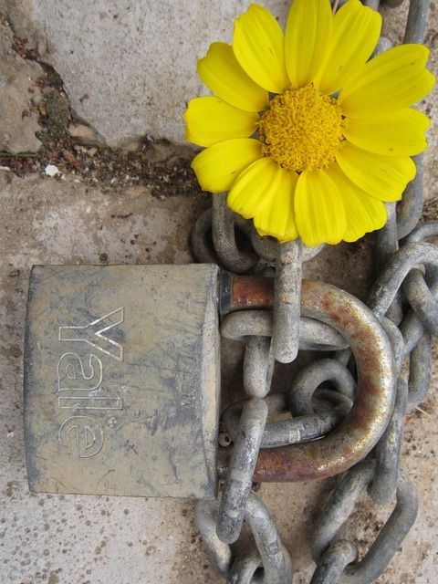 Castle flower and closed key and lock.