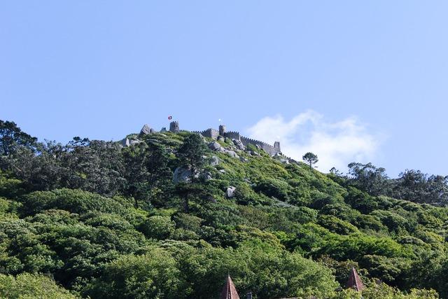 Castle forrest towers, architecture buildings.