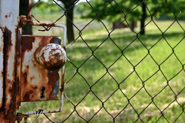 Castle garden gate garden door, nature landscapes.