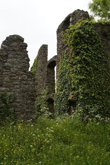 Castle ruin middle ages, architecture buildings.