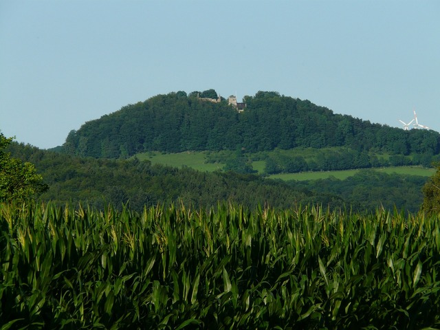 Castle scharfenberg hilltop scharfenberg, nature landscapes.