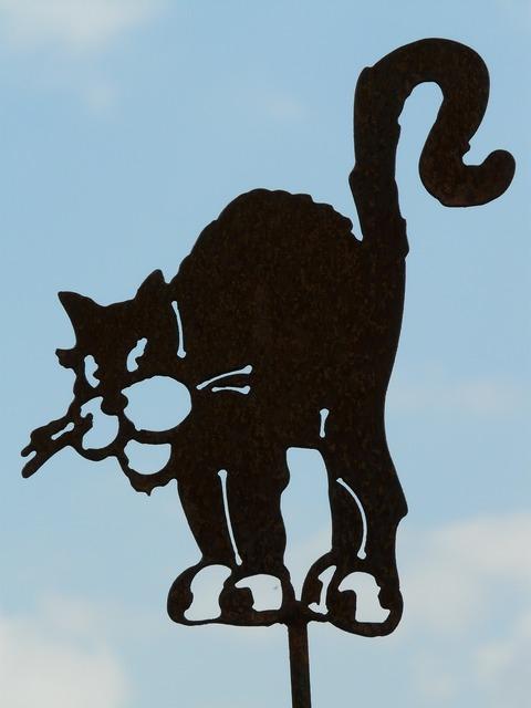 Cat figure mieze, animals.