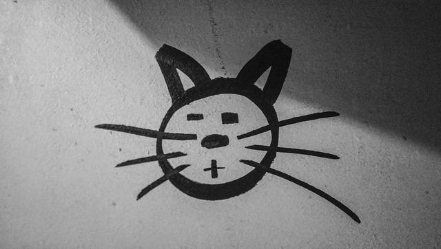 Cat graffiti figure, animals.