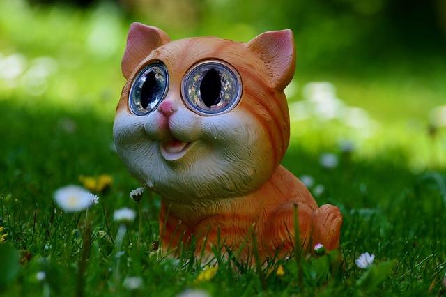 Cat meadow cute, animals.
