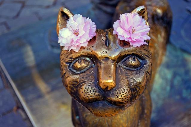 Cat monument uzhgorod, animals.