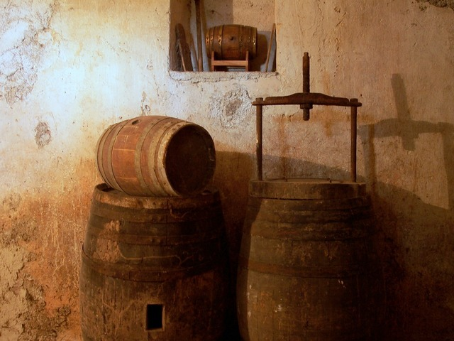 Cellar wine botte.