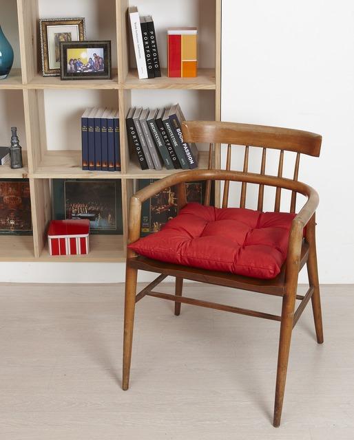Chair cushions bookshelves.