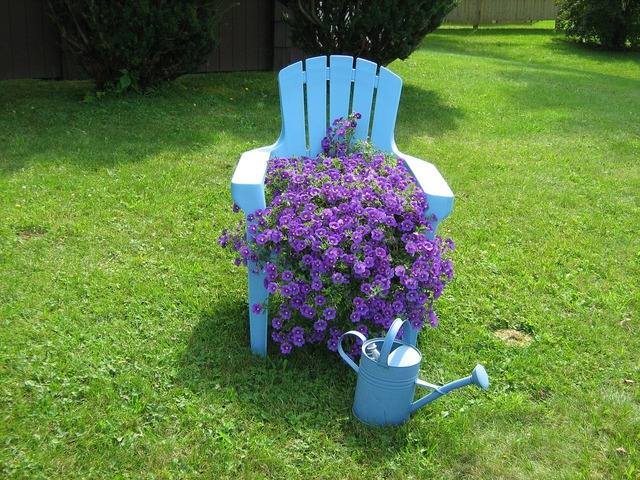 Chair flowers green, nature landscapes.