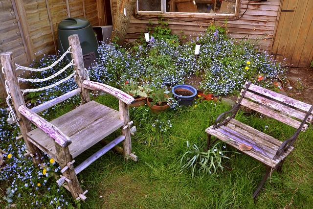 Chairs garden seat, nature landscapes.