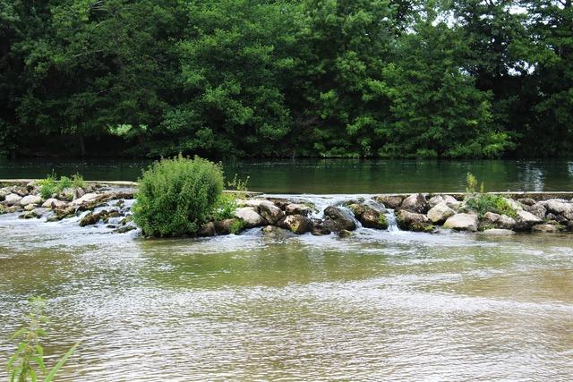 Charente river nature, nature landscapes.