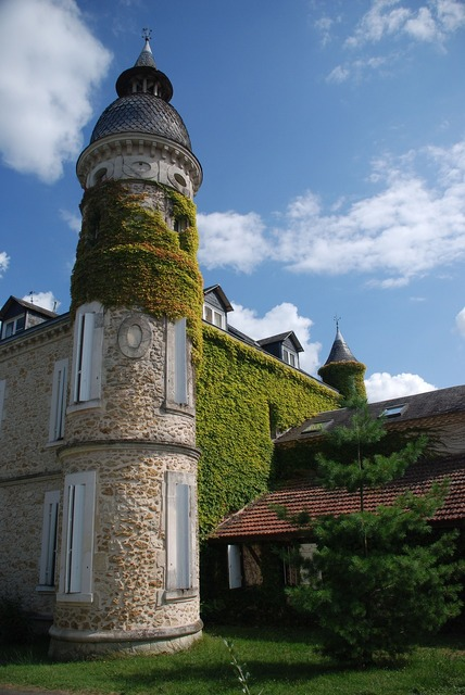 Chateau tower ivy.