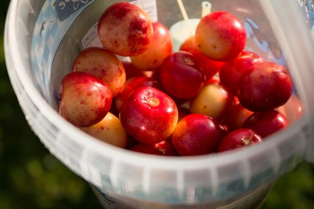 Cherries fruit red, food drink.