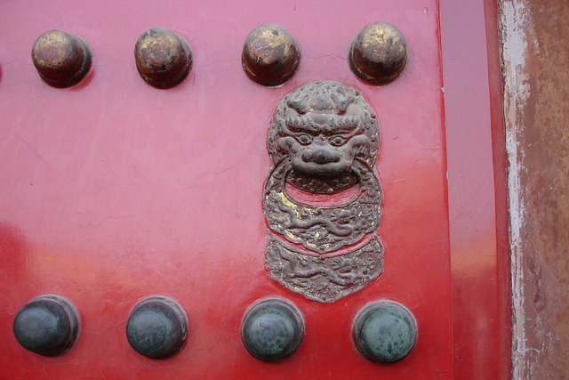 China door lion head.