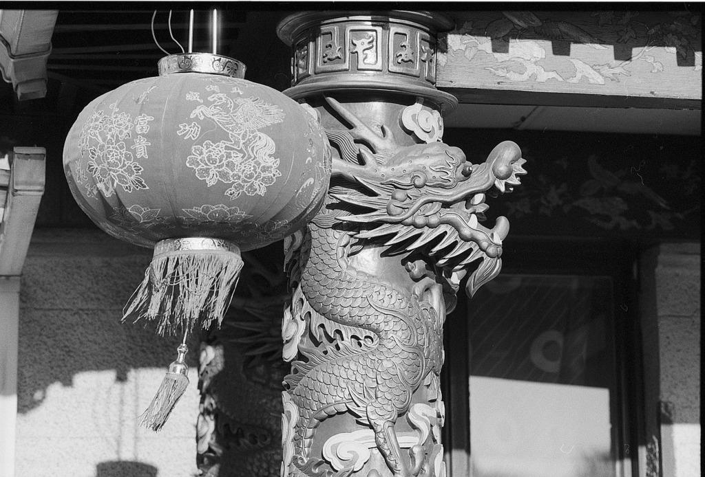 Chinese lantern motives.