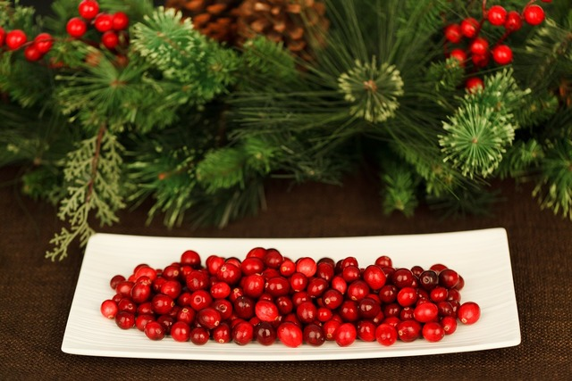 Christmas background berry, backgrounds textures.