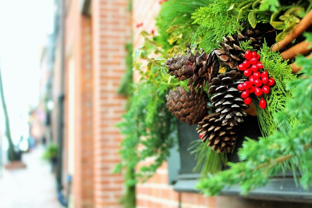 Christmas decorations xmas decorations pine cones, architecture buildings.