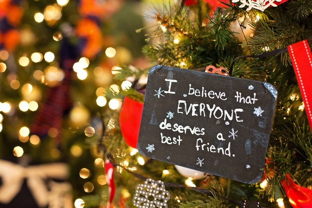 Christmas ornament xmas decoration.
