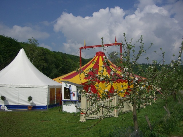 Circus tent circus in the green tent, nature landscapes.