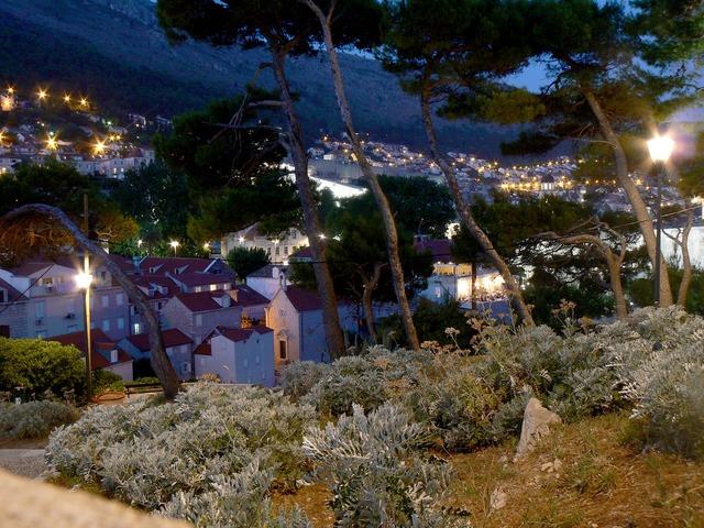 City park night lights, nature landscapes.