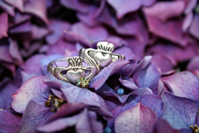 Claddagh rings plant flowers, nature landscapes.
