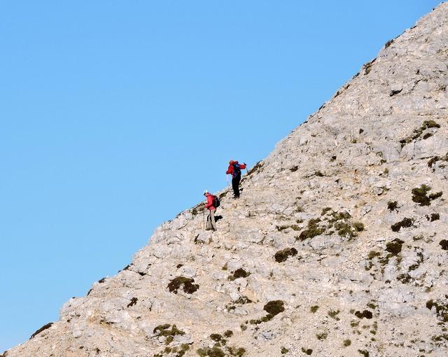Climbing climbers top.