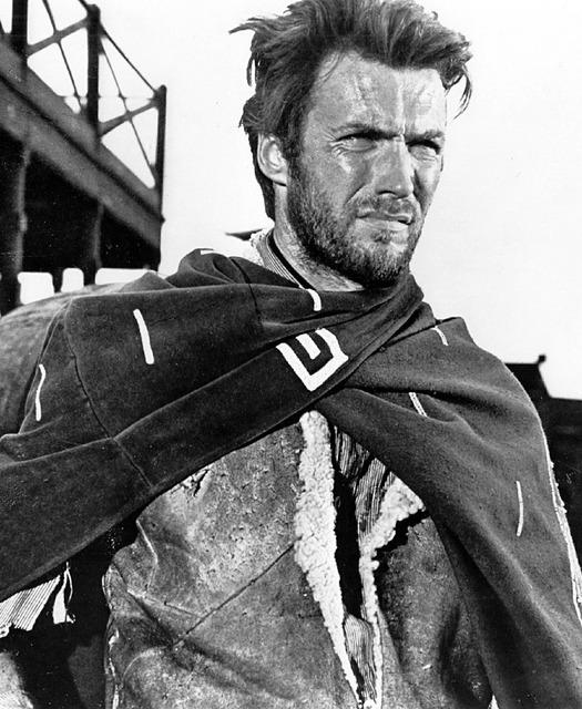 Clint eastwood westerns movies.