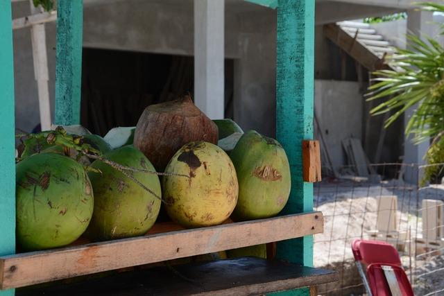 Coco fresh beach, travel vacation.