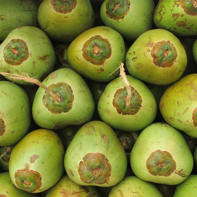 Coconuts fruit coco, food drink.