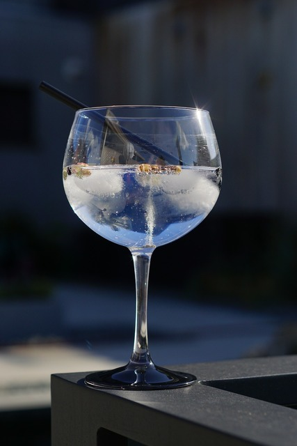 Coctail gin tonic summer.