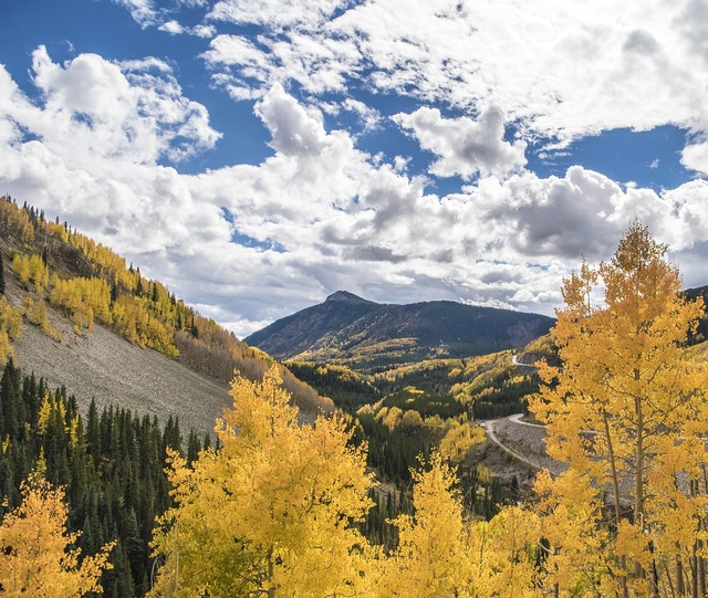 Colorado fall leaves mountains, nature landscapes.