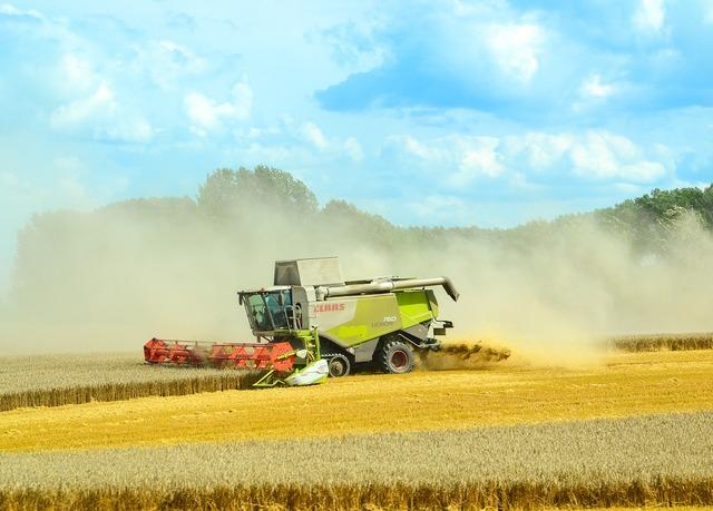 Combine harvester agriculture harvest.