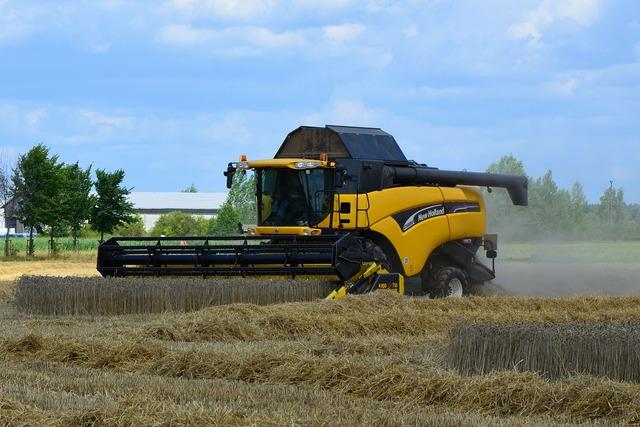 Combine harvester grain harvest harvester.