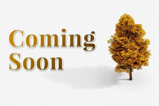 Coming soon welcome, business finance.
