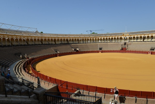 Corrida sevilla spain, travel vacation.