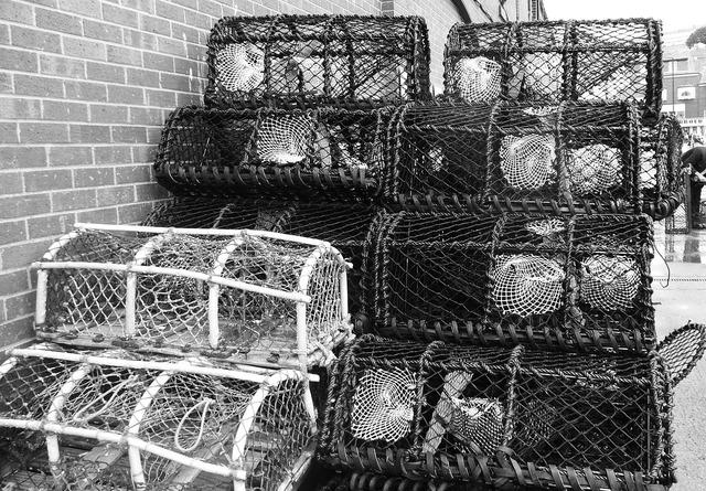 Crab trap fishing, industry craft.
