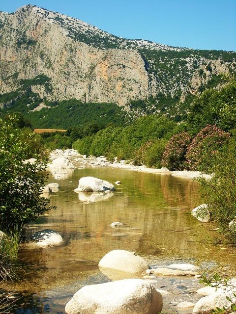 Creek transparent water green, nature landscapes.