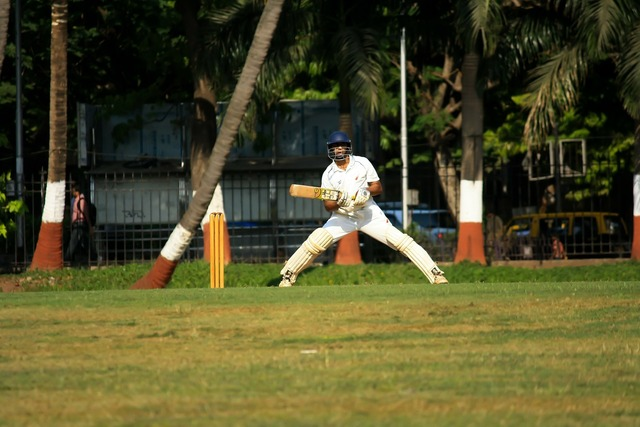 Cricket batsman player.