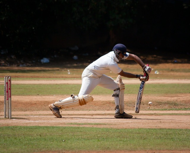 Cricket cricketer batting.