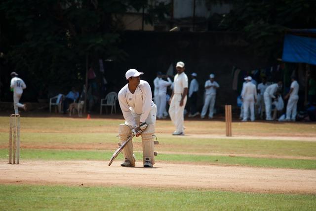Cricket practice batsman.