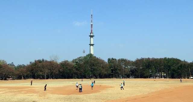 Cricket sports game.