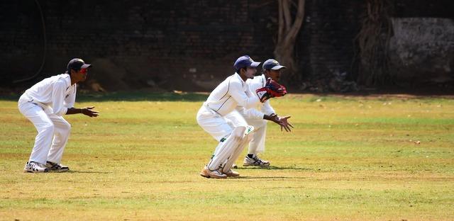 Cricket wicket keeping.