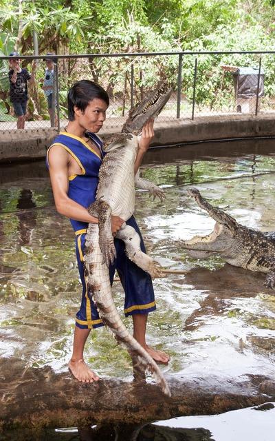Crocodile man show, people.