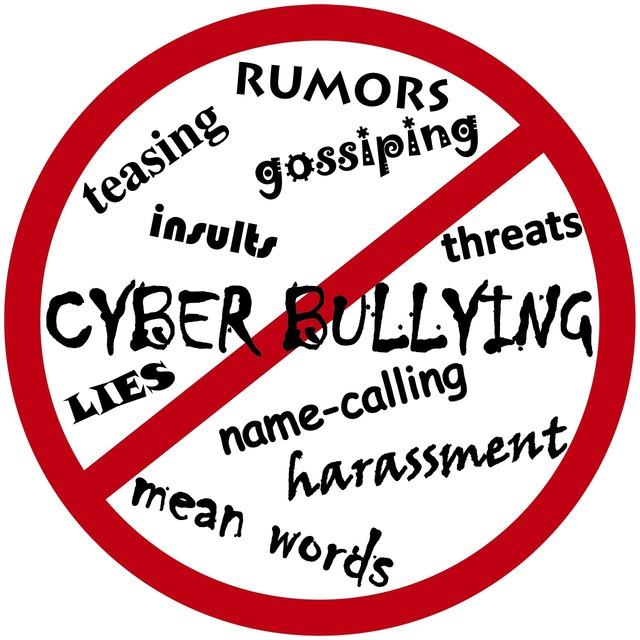 Cyber bullying bully rumor.