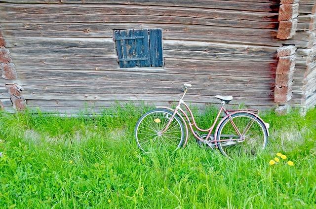 Cycle barn summer.