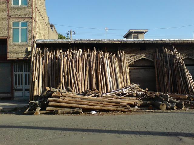 Darwazeh iraq tree trunks, business finance.