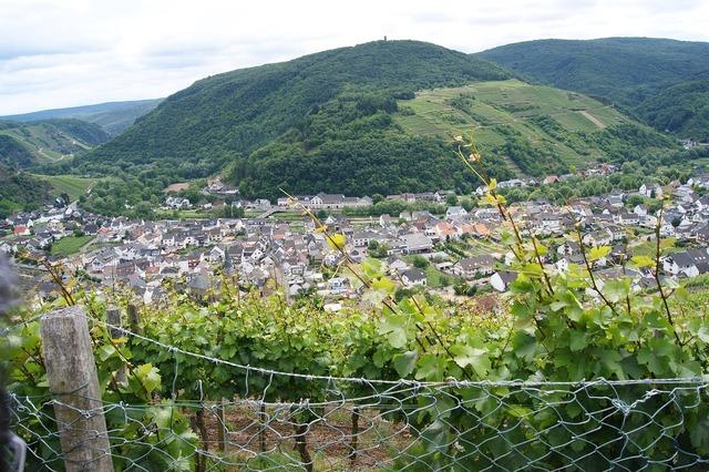 Dernau ahr valley wine.