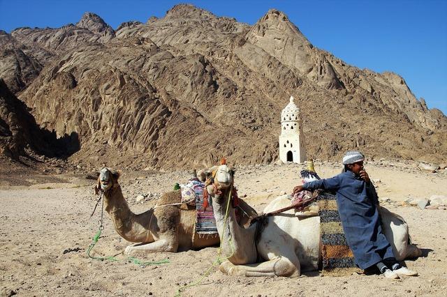 Desert bedouin young.