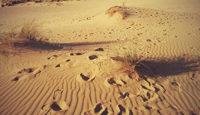 Desert fingerprint sardinia.